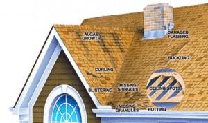roof_repair_warning_signs, Performance Metal Roofing | Wood Repairs | ME and NH